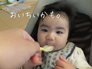 初めての離乳食画像