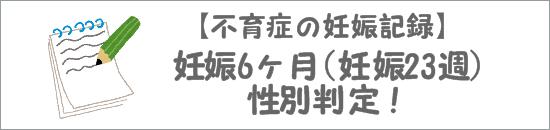 妊娠6ヶ月(妊娠23週目)性別判定!