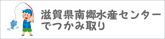 滋賀県南郷水産センターでつかみ取り